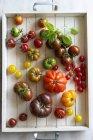 Різні барвисті свіжі помідори — стокове фото