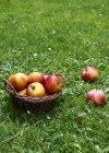 Pommes rouges fraîches — Photo de stock