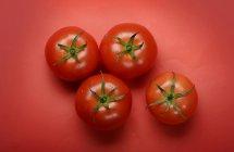 Quattro pomodori rossi — Foto stock