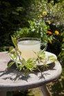 Чай из свежих листьев ежевики — стоковое фото