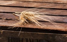 Ears of wheat on crate — Stock Photo