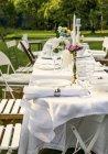 Днем представления таблицы заложен летний сад партии — стоковое фото