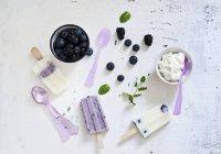 Лохини домашнє морозиво — стокове фото