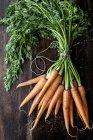 Bouquet de carottes fraîches — Photo de stock