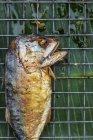 Fritto di pesce sulla griglia — Foto stock
