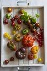 Bunte reife Tomaten — Stockfoto