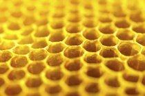 Délicieux miel doré — Photo de stock