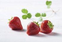 Свіжої полуниці з листям — стокове фото