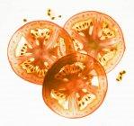 Rodajas de tomate retroiluminadas sobre fondo blanco - foto de stock