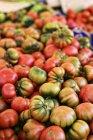 Ripe Costoluto tomatoes — Stock Photo