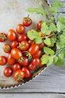 De tomates maduros frescos con hojas - foto de stock