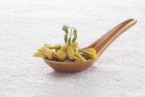 Closeup view of Sesbania edible tropical plant on a ceramic spoon — Stock Photo