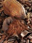Granos de cacao y cacao en polvo - foto de stock