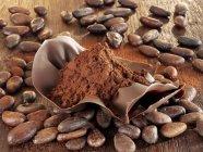 Cacao en polvo en cáscara de chocolate - foto de stock