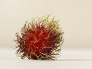 Frischer dorniger Rambutan — Stockfoto