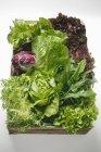 Lechuga fresca y hojas de ensalada en cajón - foto de stock