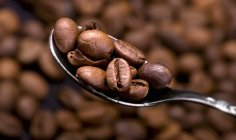 Coffee beans on spoon — Stock Photo