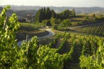 Tagsüber Fernblick über Villa kleine Immobilien, Toskana, Italien — Stockfoto
