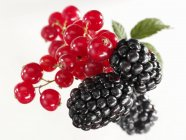 Redcurrants and blackberries with leaves — Stock Photo