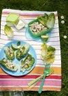 Vista elevada de ensalada de pollo en manta de picnic a rayas - foto de stock
