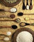 Різні види рису — стокове фото