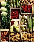 Асорті види овочів у woodchip кошики — стокове фото
