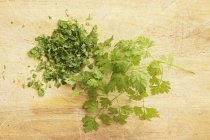Partly chopped Fresh chervil — Stock Photo