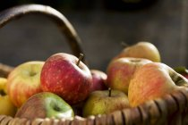 Frisch gepflückte Herbst-Äpfel — Stockfoto