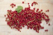 Свіжі redcurrants з листя — стокове фото
