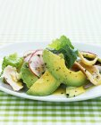 Avocado salad with chicken and radishes — Stock Photo