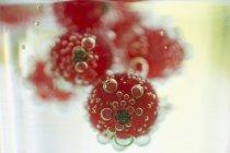 Стакан води з redcurrants — стокове фото