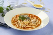 Spaghetti in brodo di pomodoro — Foto stock