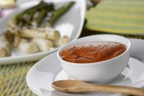 Closeup view of Romesco red sauce in a white bowl — Stock Photo