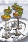 Medlar sorbet with fresh mint — Stock Photo
