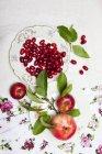 Кизил вишни и яблоки с листьями — стоковое фото