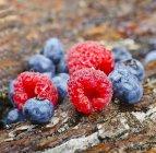 Framboises et bleuets frais — Photo de stock
