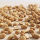 Un montón de cacahuetes asados - foto de stock