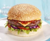 Cheeseburger with tomatoes and ketchup — Stock Photo