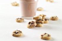 Biscotti al cioccolato — Foto stock