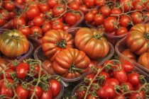 Bife e tomates cereja — Fotografia de Stock