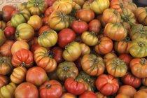 Барвисті помідорів біфштекс — стокове фото