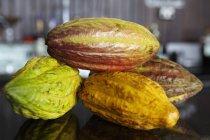 Granos de cacao crudos - foto de stock