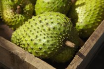 Closeup view of soursop fruit in a crate — Stock Photo