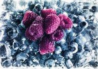 Framboises sur bleuets congelés — Photo de stock