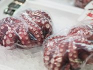 Octopuses in plastic bags — Stock Photo