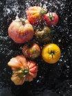 Различные красочные помидоры в воде — стоковое фото