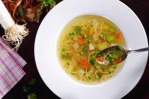 Sopa de fideos con verduras - foto de stock