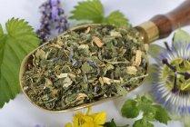 Mezcla para té de hierbas , - foto de stock