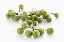Баклажаны из свежей зелени — стоковое фото