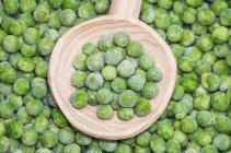 Fresh green Peas — Stock Photo